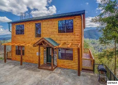 Gatlinburg Single Family Home For Sale: 208 W Pinnacle Dr.