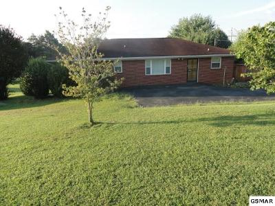 Seymour Single Family Home For Sale: 1279 Old Sevierville Pike