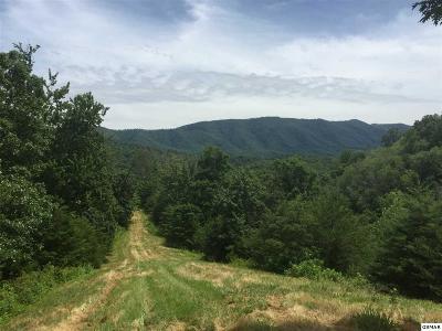 Dandridge Farm & Ranch For Sale: Highway 411