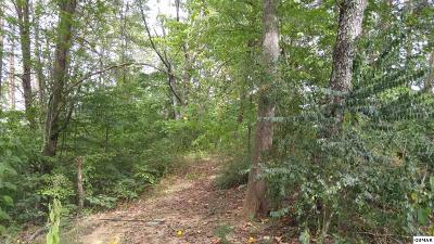 Pigeon Forge Residential Lots & Land For Sale: Lots 4 & 20 Vickwood Hills S/D