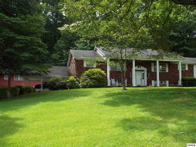 Knoxville Single Family Home For Sale: 6516 Spring View Lane