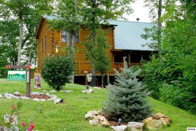 Wears Valley TN Single Family Home For Sale: $387,900