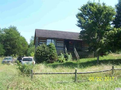 Sevierville Single Family Home For Sale: 1243 Payne School Dr.