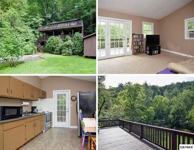 Sevierville Single Family Home For Sale: 3109 N Clear Fork Road