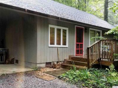 Gatlinburg Single Family Home For Sale: 518 Bettis Drive