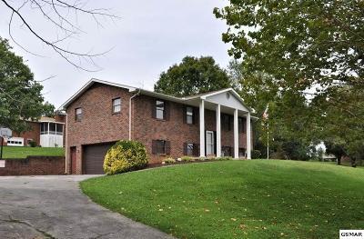 Seymour Single Family Home For Sale: 320 Navaho Drive