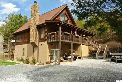 Servierville, Sevierville Single Family Home For Sale: 1114 Carroll Hill Ln