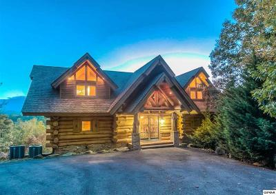 Gatlinburg Single Family Home For Sale: 330 Pinnacle Vista Rd
