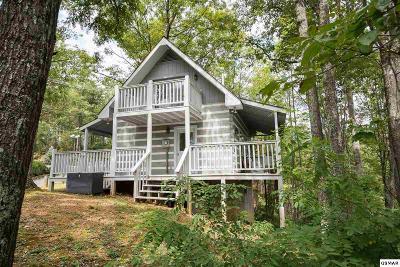 Gatlinburg Single Family Home For Sale: 536 Deer Path Ln