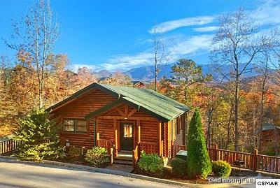 Gatlinburg Single Family Home For Sale: 729 Mountain Stream Way