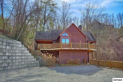 Sevierville Single Family Home For Sale: 3747 Edge Park Drive