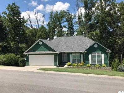 Seymour Single Family Home For Sale: 915 Sentry Ridge View Drive