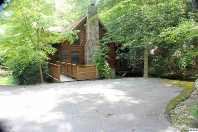 Pigeon Forge Single Family Home For Sale: 3006 Eagles Claw Way