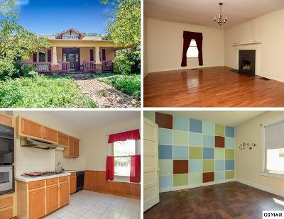 Knoxville Single Family Home For Sale: 2600 Woodrow Drive