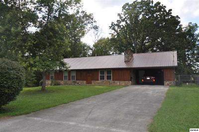 Pigeon Forge Single Family Home For Sale: 446 Asbury