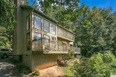 Gatlinburg Single Family Home For Sale: 2115 Luzerne Dr