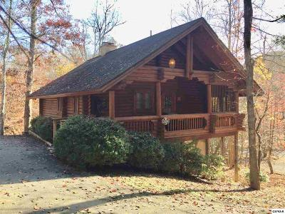 Pigeon Forge Single Family Home For Sale: 715 Kings Hills Blvd