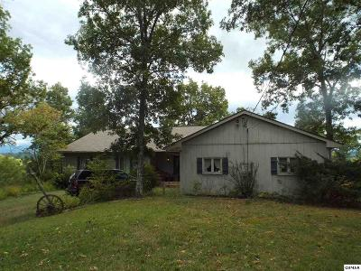 Sevierville Single Family Home For Sale: 1124 Lindsey Drive