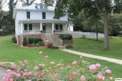 Dandridge Single Family Home For Sale: 113 E Main Street