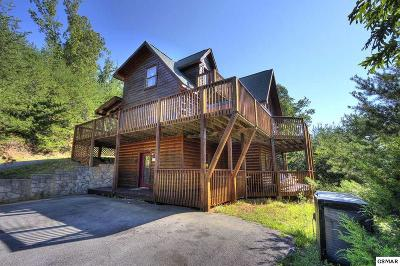 Sevierville Single Family Home For Sale: 1975 E Mountain View Way