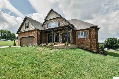 Maryville Single Family Home For Sale: 2025 Legacy Lane