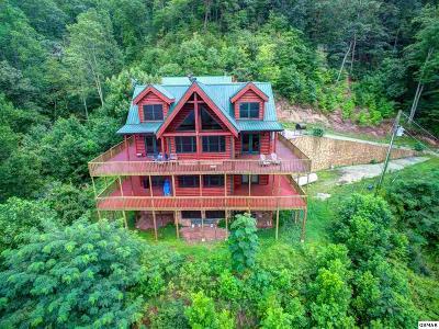 Seymour Single Family Home For Sale: 1309 Goose Creek Way