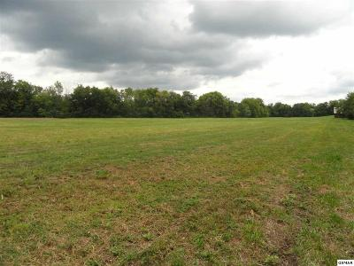 Sevierville Residential Lots & Land For Sale: 6 Acres Old Newport Hwy