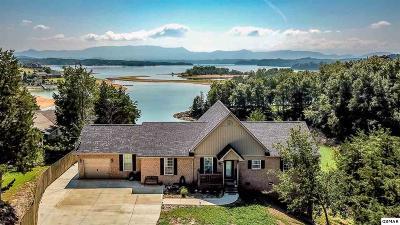 Dandridge Single Family Home For Sale: 527 Hook Cir