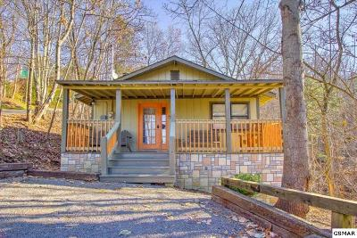 Sevierville Single Family Home For Sale: 1720 Silver Poplar Ln