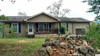 Cosby Single Family Home For Sale: 228 Ridge Walk Road