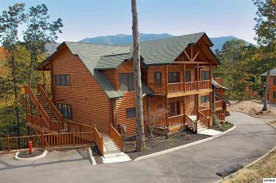 Gatlinburg Single Family Home For Sale: 733 Mountain Stream Way