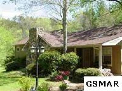 Sevierville Single Family Home For Sale: 827 Mill Creek Road