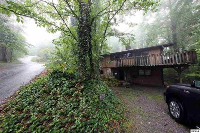 Pigeon Forge Single Family Home For Sale: 430 Sugar Mountain Way