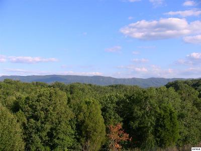 Seymour Residential Lots & Land For Sale: Knob Creek Rd N