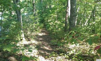 Pigeon Forge Residential Lots & Land For Sale: Lot 9a, B, C Monte Wood Circle
