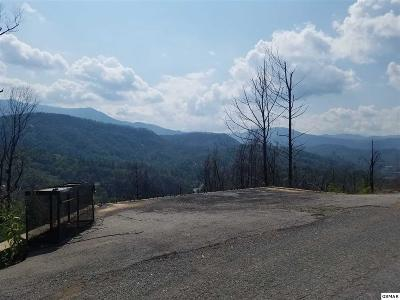 Gatlinburg TN Residential Lots & Land For Sale: $69,900