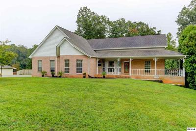 Strawberry Plains Single Family Home For Sale: 480 Casey Lane