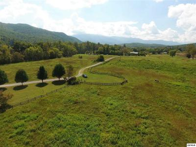 Residential Lots & Land For Sale: Creek Song Way