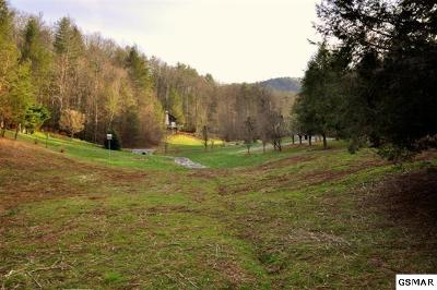 Townsend TN Residential Lots & Land For Sale: $50,000