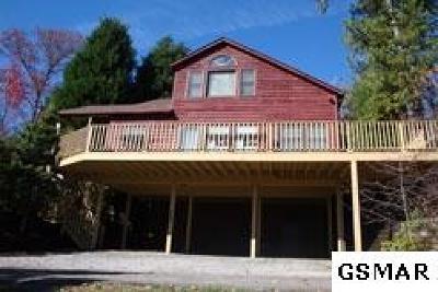 Gatlinburg Single Family Home For Sale: 1419 S Baden