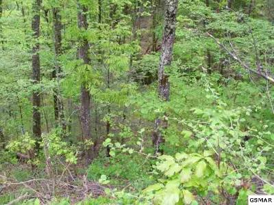 Sevierville Residential Lots & Land For Sale: Par 105 Poplar View Lane