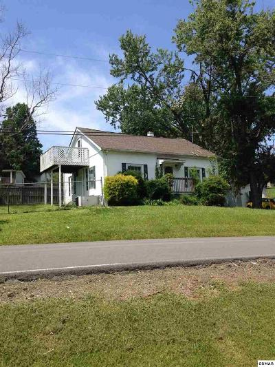Sevierville Single Family Home For Sale: 1440 New Era Rd.
