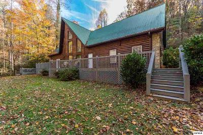 Sevierville Single Family Home For Sale: 2258 Lones Branch Lane