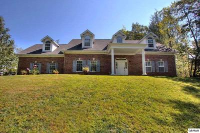 Gatlinburg Single Family Home For Sale: 1742 Cardinal Drive