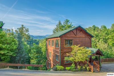 Gatlinburg Single Family Home For Sale: 808 Great Smoky Way