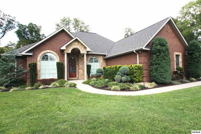 Sevierville Single Family Home For Sale: 1709 Valley Woods Dr