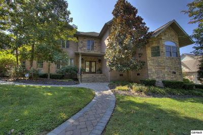 Sevierville Single Family Home For Sale: 1522 Landmark Blvd