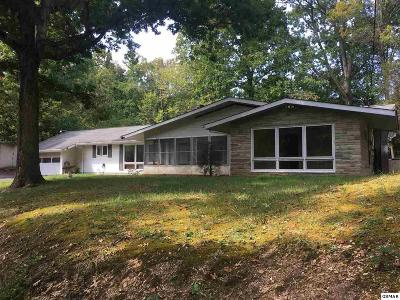 Pigeon Forge Single Family Home For Sale: 2564 Highland Park Drive
