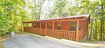 Sevierville Single Family Home For Sale: 1524 Ski View Lane