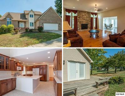 Dandridge Single Family Home For Sale: 219 Sullivan Pointe